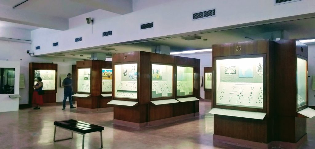Coins Gallery